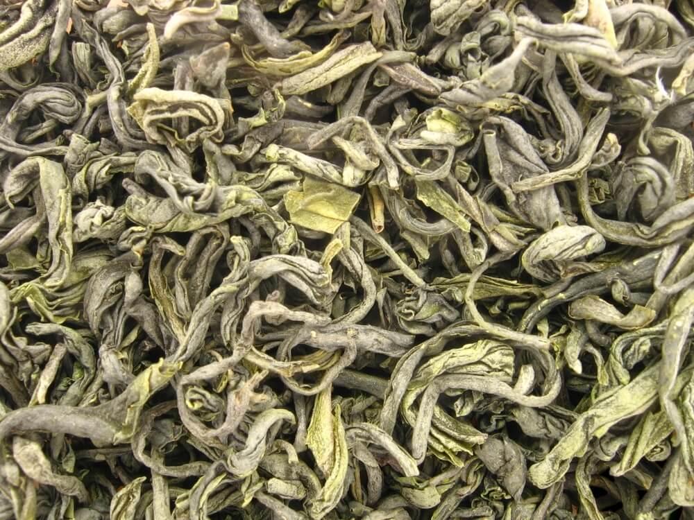 feuilles thé vietnam thai nguyen