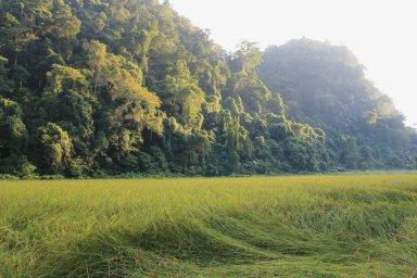 parc nationaux vietnam