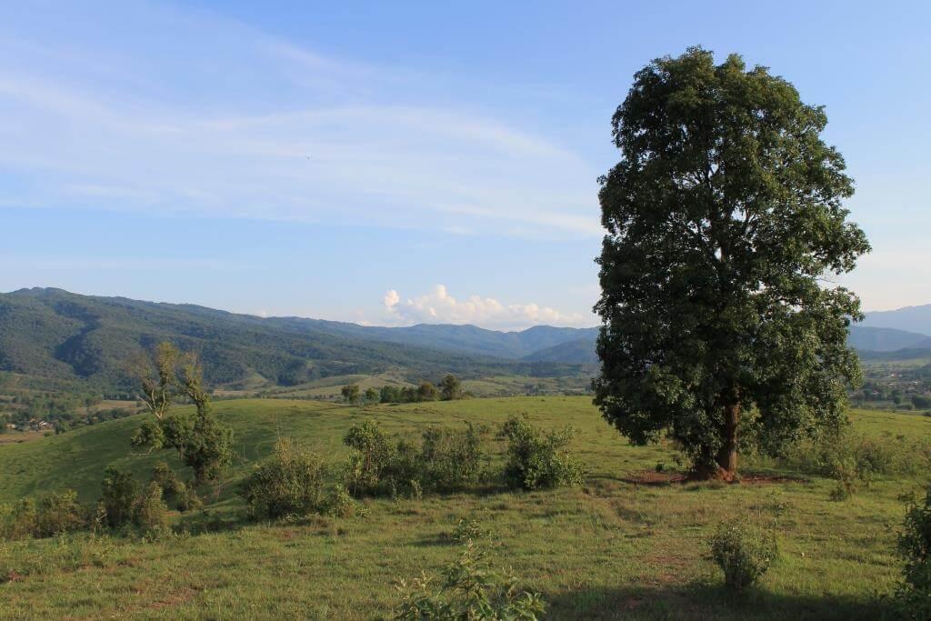 plaine jarres laos