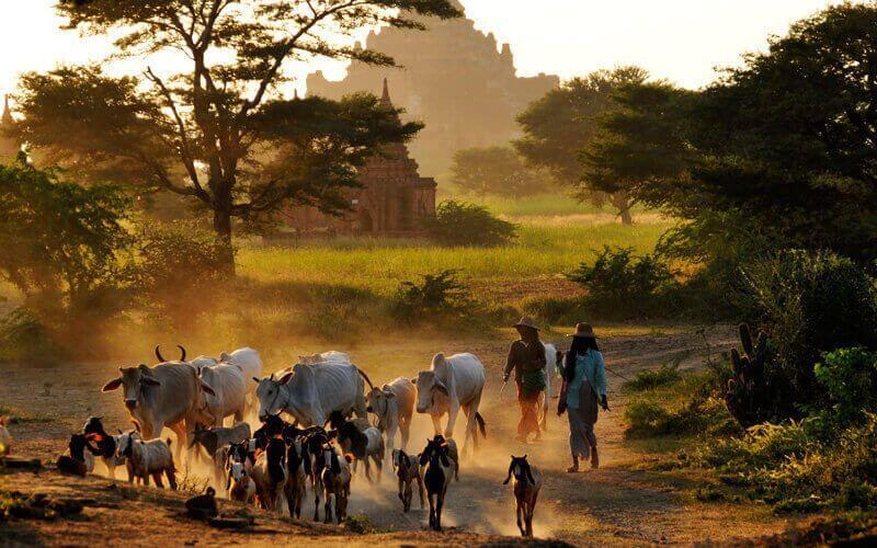 La Birmanie, une destination mystérieuse - Amica Travel